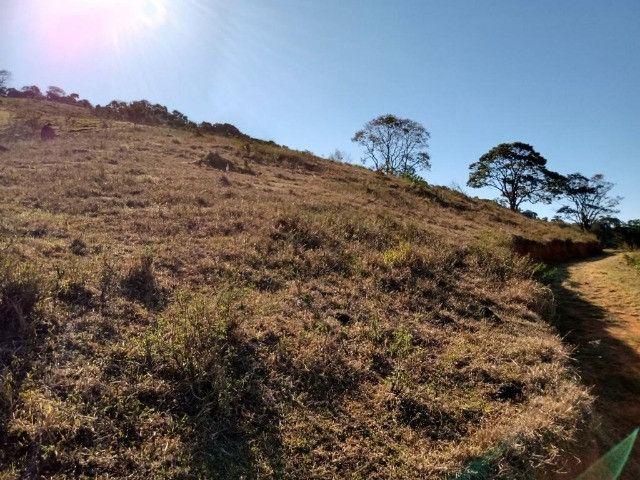 Terreno com 19 hectares cod 03 - Foto 6