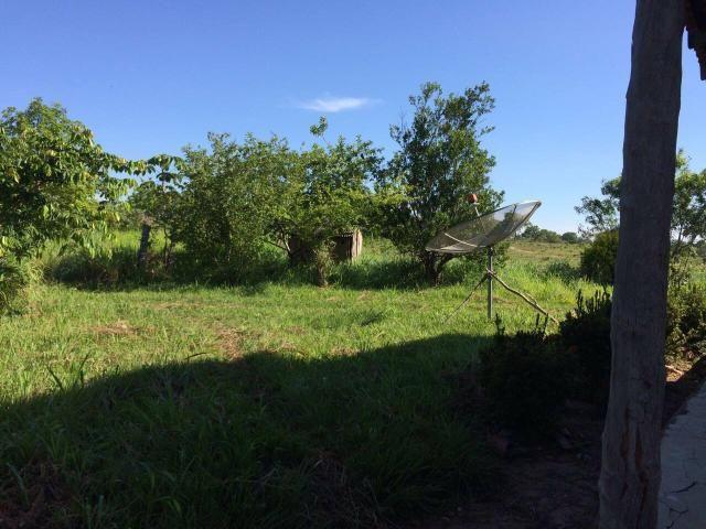 Vendo Fazenda Porteira fechada 80 hectares/DOCUMENTADA - Foto 8