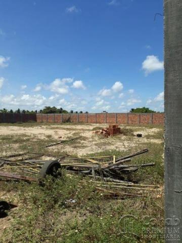 Terreno no povoado matapuã, bairro mosqueiro - Foto 8