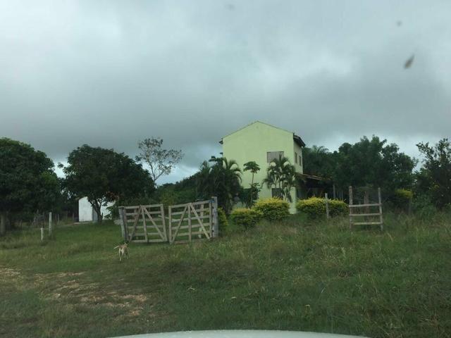 Vendo Fazenda Porteira fechada 80 hectares/DOCUMENTADA - Foto 9