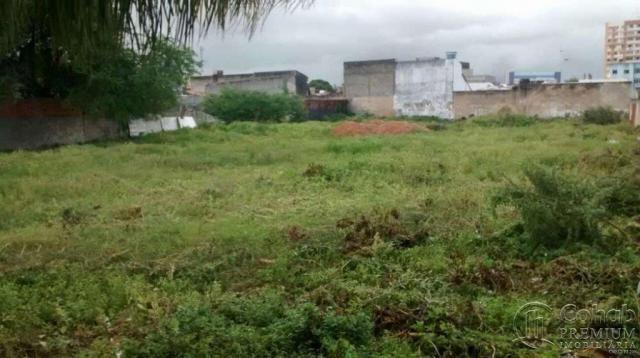 Terreno no Bairro Ponto Novo - Foto 5