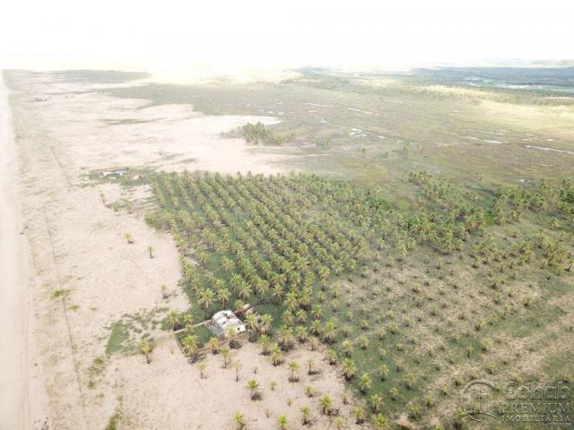 Grande área na barra dos coqueiros, a beira mar - Foto 3