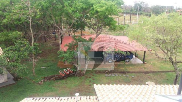 Chácara com 3 dormitórios à venda, 20000 m² por r$ 1.350.000,00 - centro - chapada dos gui - Foto 6