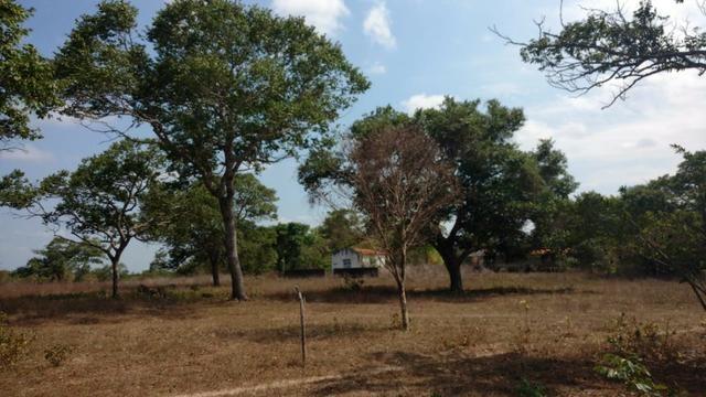 Fazenda em José de Freitas-PI - Foto 20