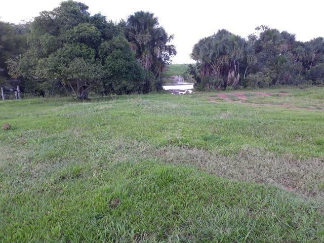 Fazenda em Arenapolis Mato Grasso Terra de Cultura - Foto 16