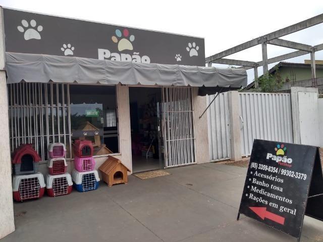 Vende-se este pet shop - Foto 8