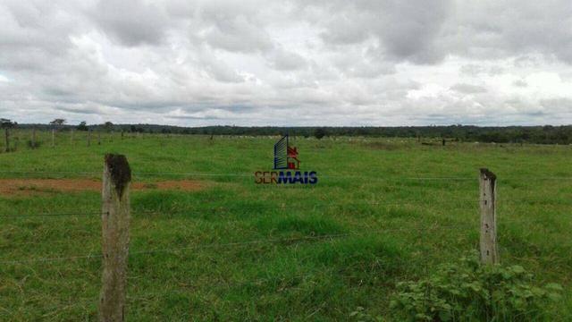 Fazenda à venda, por R$ 40.000.000 - Zona Rural - Rolim de Moura/RO - Foto 5