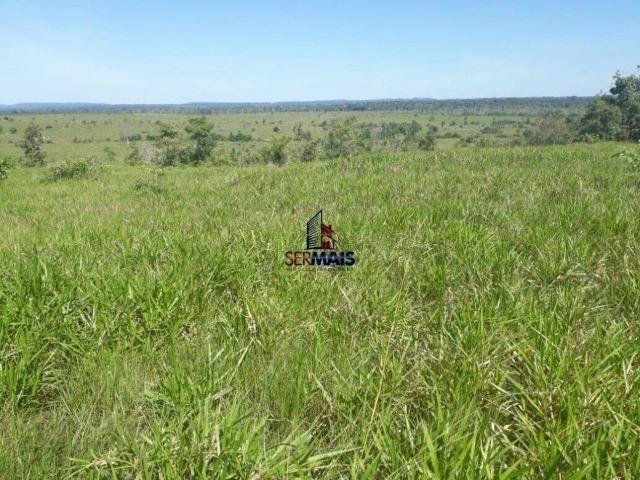 Fazenda à venda, por R$ 40.000.000 - Zona Rural - Rolim de Moura/RO - Foto 16