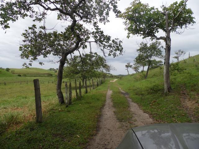 Fazenda 30 alqueires em Casimiro de Abreu-RJ - Foto 3