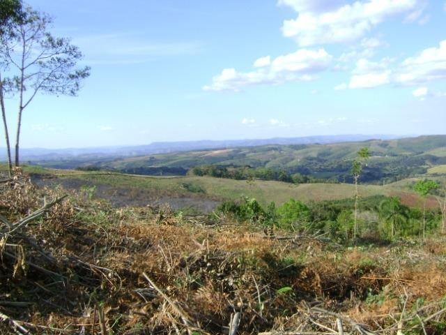 Sítio Barra Grande - 23 alqueires - Bico dos Papagaios - Prudentópolis - PR - vista linda - Foto 10