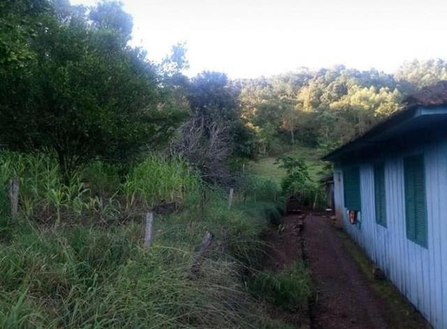 Sítio em Esperança do Sul, RS (AR2125) - Foto 2