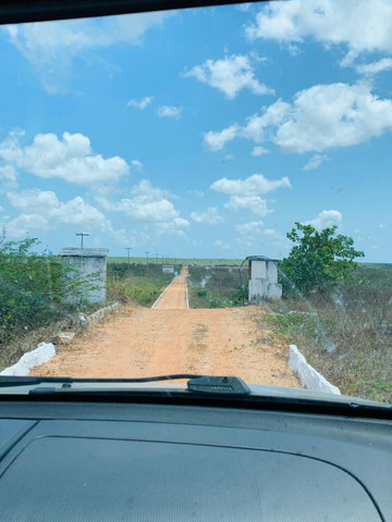 FZ00- Vendo Fazenda Camarão Itapipoca Ceara  - Foto 13