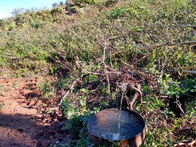 Terreno com 19 hectares cod 03