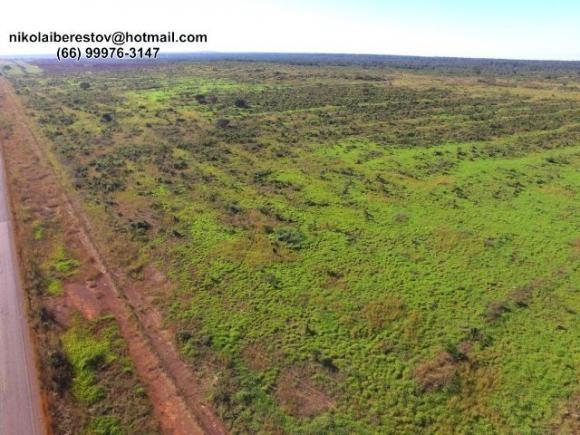 Fazenda 2.400 hectares nordeste mt nikolaiimoveis