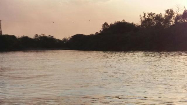 Chácara de 2 hectares em barão de melgaço, nas margem do rio! - Foto 4