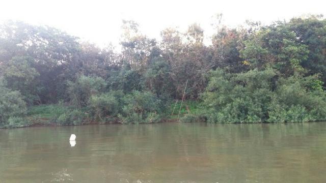 Chácara de 2 hectares em barão de melgaço, nas margem do rio! - Foto 6