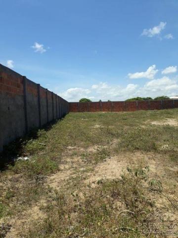 Terreno no povoado matapuã, bairro mosqueiro - Foto 5