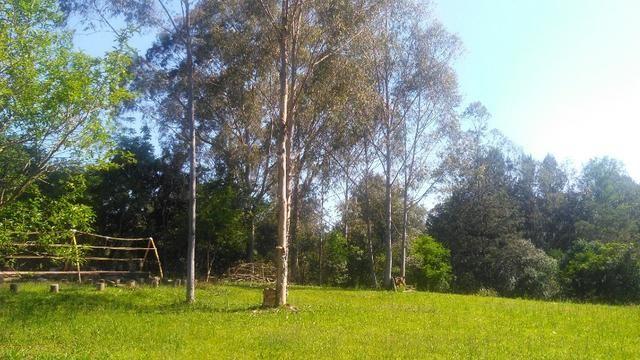 Sítio com linda casa próximo a RS 239 - Sapiranga e Araricá - Foto 15