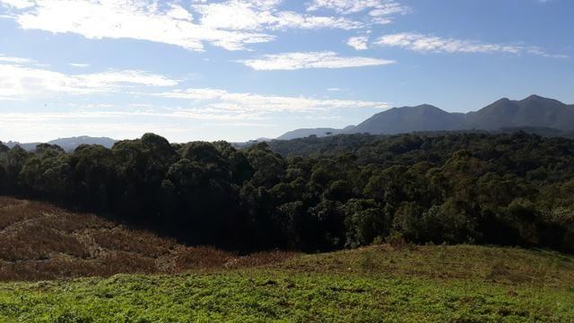 Excelente área rural medindo 70.153 m2, São José dos Pinhais - Roça Velha