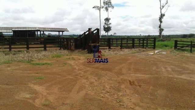 Fazenda à venda, por R$ 40.000.000 - Zona Rural - Rolim de Moura/RO - Foto 7