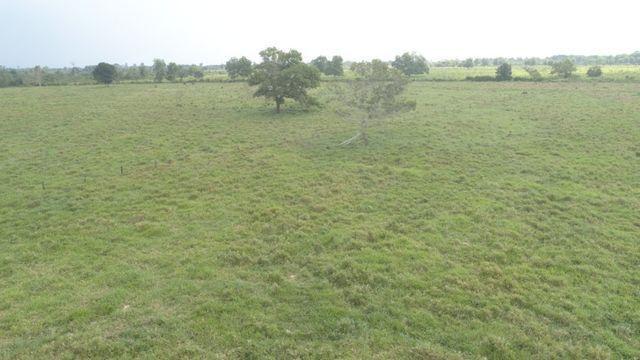 3.82 hectares a 12 km de Castanhal por 220 mil reais Documentada - Foto 12