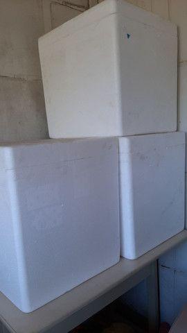 Caixa térmica de isopor