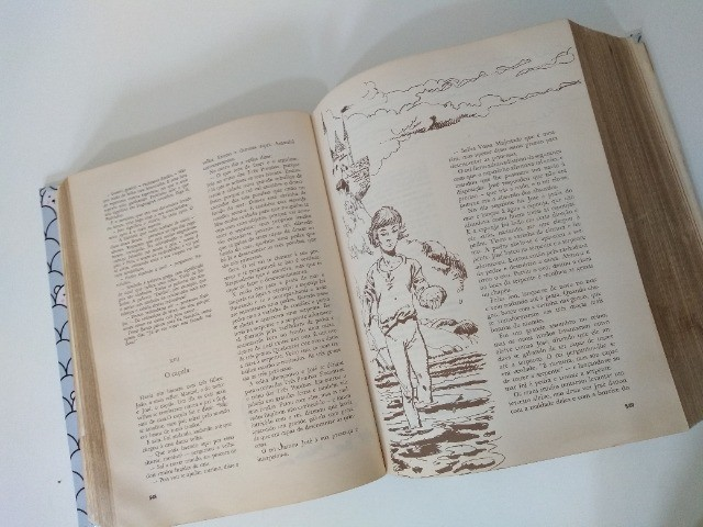 Obra Infantil Completa: Edição Centenário 1882 - 1982 Monteiro Lobato - Foto 5
