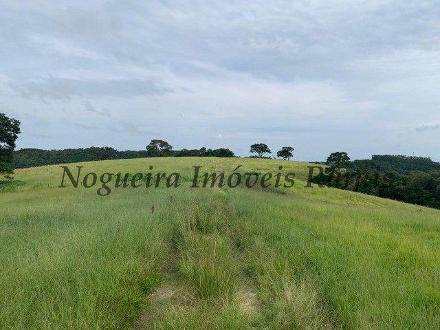 Fazenda com 59 alqueires para pecuária (Nogueira Imóveis Rurais) - Foto 6
