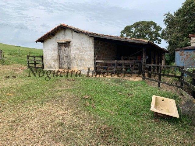 Fazenda com 59 alqueires para pecuária (Nogueira Imóveis Rurais) - Foto 12