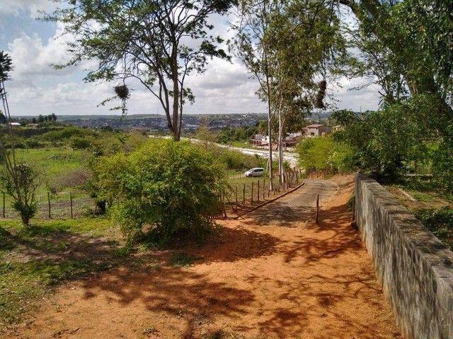 Fazenda em Paudalho - Foto 4