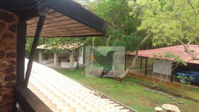 Chácara com 3 dormitórios à venda, 20000 m² por r$ 1.350.000,00 - centro - chapada dos gui - Foto 3