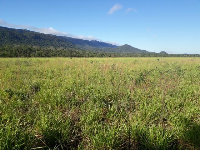 Fazenda em Rosário Oeste com 784 Hectares