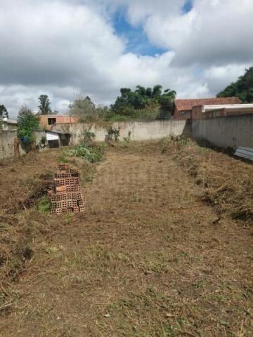 Terreno para venda em quatro barras, jardim das acácias, 2 dormitórios, 1 banheiro - Foto 4