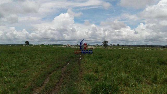 Fazenda à venda, por R$ 40.000.000 - Zona Rural - Rolim de Moura/RO - Foto 3
