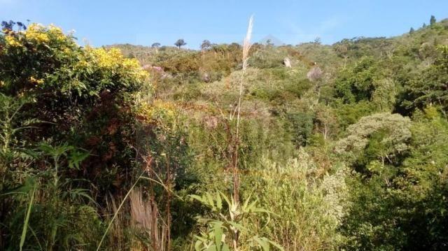 Chácara para venda em campina grande do sul, br 116 - Foto 16