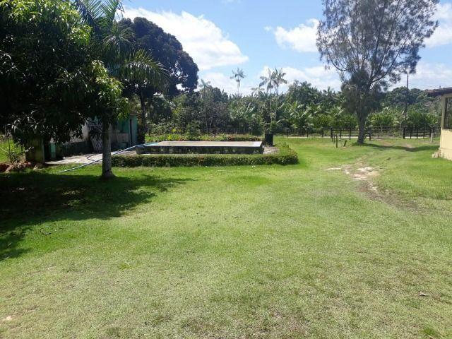 3.82 hectares a 12 km de Castanhal por 220 mil reais Documentada - Foto 7
