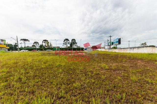 Terreno para alugar no Centro - Pinhais/PR - Foto 10