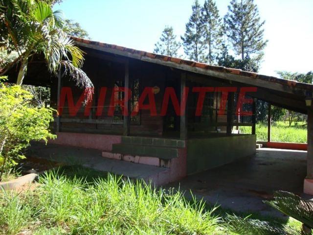 Chácara à venda em Chácara california, Boa esperança do sul cod:334447 - Foto 4