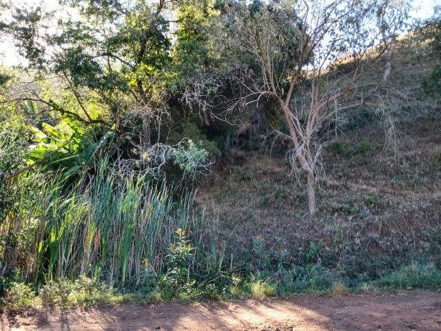 Terreno com 19 hectares cod 03 - Foto 8