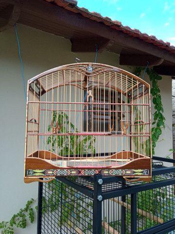Gaiola pássaro - Foto 2