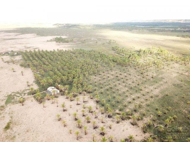 Grande área na barra dos coqueiros, a beira mar - Foto 6