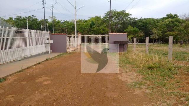 Chácara com 3 dormitórios à venda, 20000 m² por r$ 1.350.000,00 - centro - chapada dos gui - Foto 5