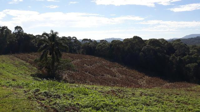 Excelente área rural medindo 70.153 m2, São José dos Pinhais - Roça Velha - Foto 6