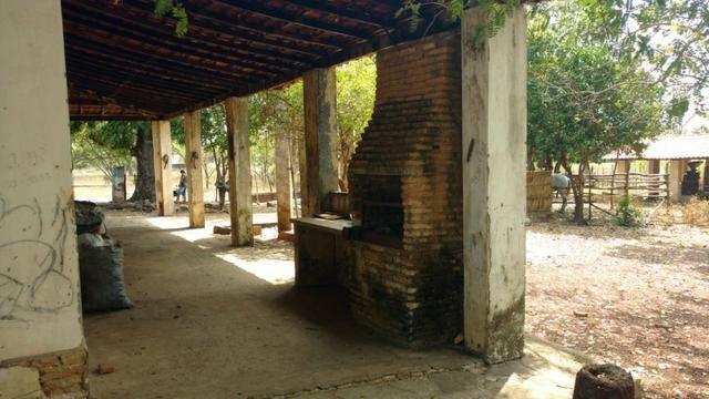 Fazenda em José de Freitas-PI - Foto 6