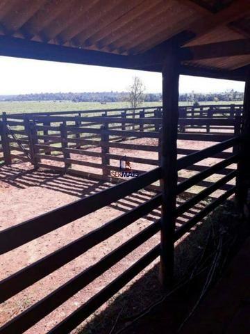 Fazenda à venda, por R$ 40.000.000 - Zona Rural - Rolim de Moura/RO - Foto 18