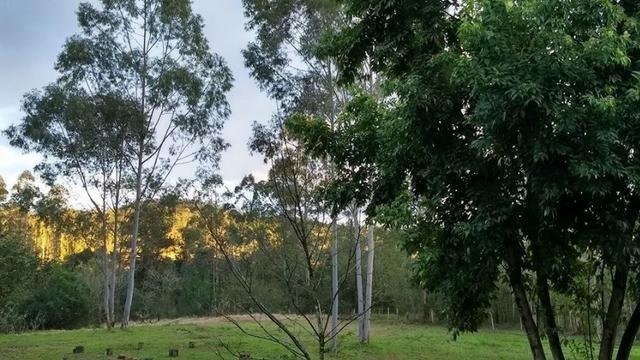Sítio com linda casa próximo a RS 239 - Sapiranga e Araricá - Foto 10