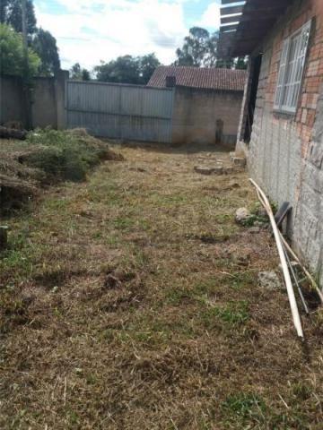Terreno para venda em quatro barras, jardim das acácias, 2 dormitórios, 1 banheiro - Foto 5