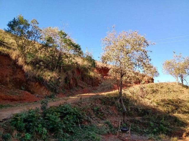 Terreno com 19 hectares cod 03 - Foto 9