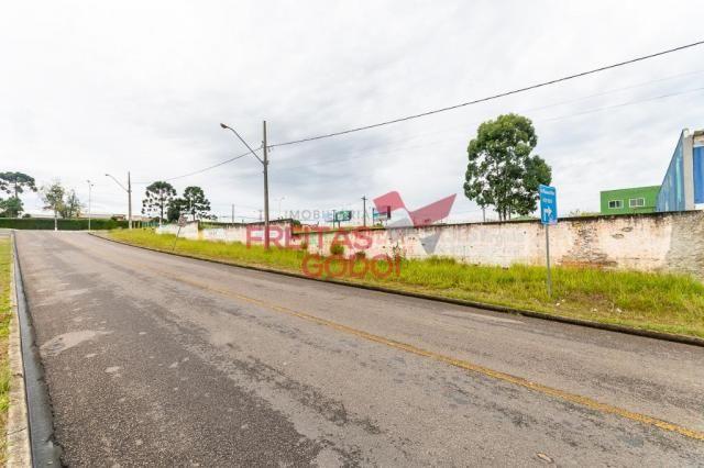 Terreno para alugar no Centro - Pinhais/PR - Foto 5