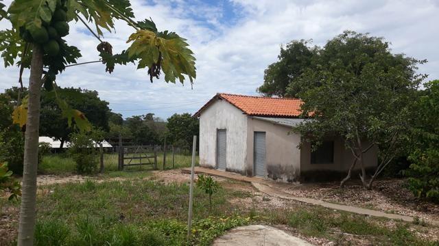 Vendo Fazenda Porteira fechada 80 hectares/DOCUMENTADA - Foto 18